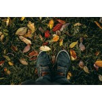 Встречайте осень без депрессий и болезней